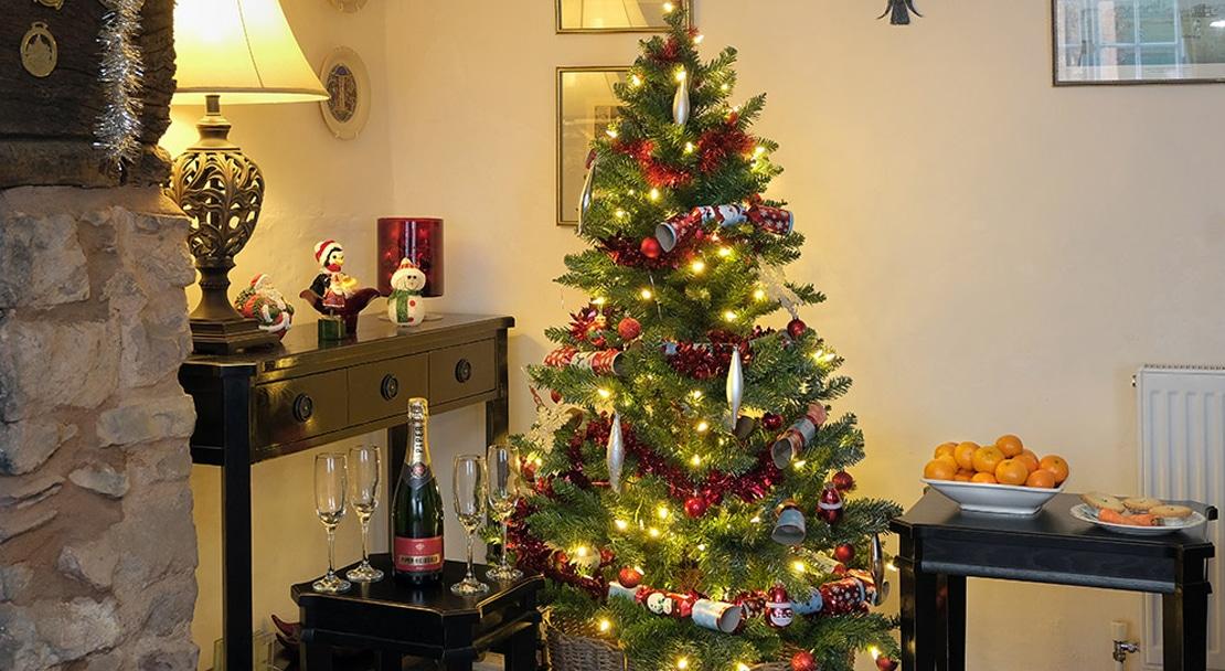 OD_Christmas_resized_2