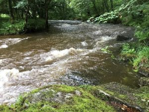 The River Barle rushes towards Tarr Steps