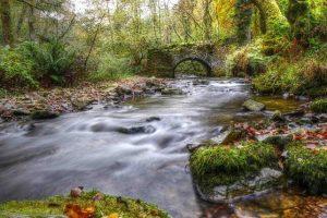 Exmoor Scenery